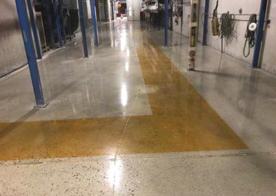 colorazione pavimenti cemento venezia